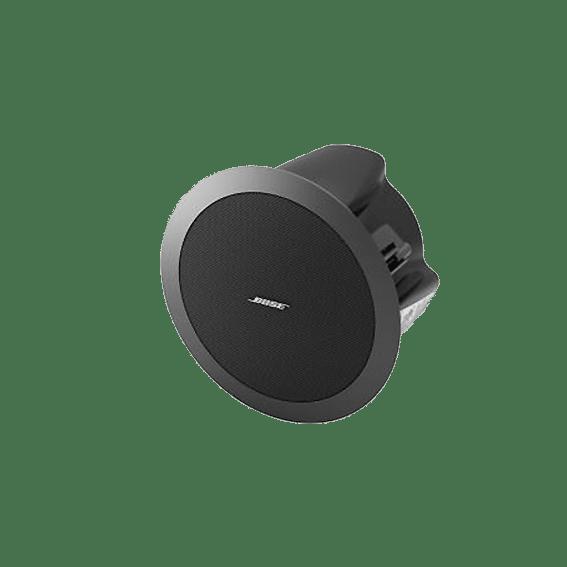 Bose DS16f LoudSpeaker Image