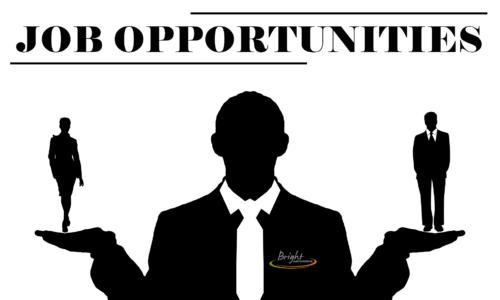 Job Opportunities Image